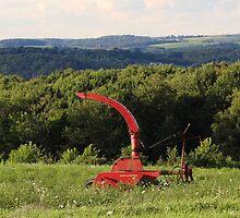 Harvest Time by vigor