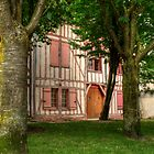 Little Pink House in the Woods by MaluC
