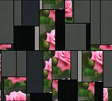 Pink Roses in Anzures 4 Art Rectangles 7 by Christopher Johnson