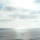 California - Sunset over the Pacific Ocean by Vivienne Gucwa