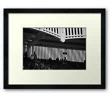 Section 421 Framed Print