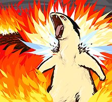 Typhlosion | Blast Burn by ishmam