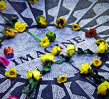 Imagine: Strawberry Fields by pixog
