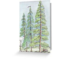 Three Trees and a man... Greeting Card