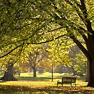 A quiet place: Autumn at Fitzroy Gardens Vic Australia by PhotoJoJo