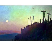 desert view at twilight, buzzard roost Photographic Print