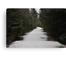 Narnia? Canvas Print