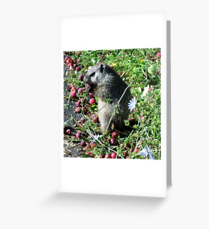 Horatio at the Bus Stop Greeting Card
