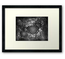 ©DA Fractal Flower I Monocrhomatic Framed Print