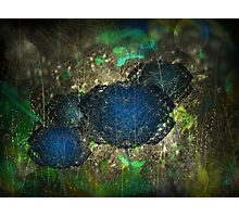 ©DA Fractal Flower I Photographic Print