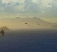The San Francisco Bay by David Denny