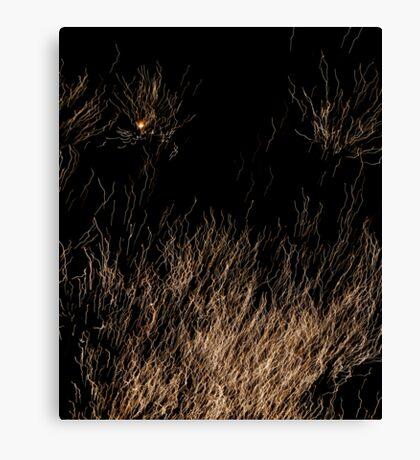 Spaghetti? Canvas Print