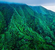 Kualoa Backcountry by Silas Leger