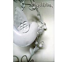 Metal Dove Congratulations Photographic Print