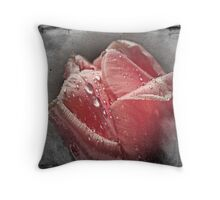 Enchanted Rose Tulip Throw Pillow