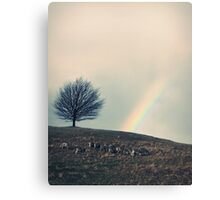 Chasing rainbows and counting sheep. Same thing really. Canvas Print