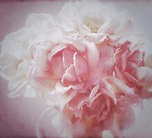 Roses by George Swann