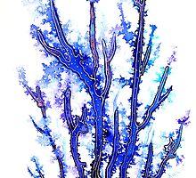 Coral by © Linda Callaghan