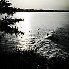 west java surf 7 by wellman
