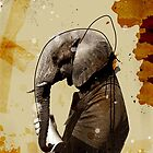 Elephant by anouviss
