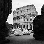 colosseum by ELENA TARASSOVA