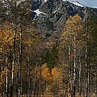 """Mount Tallac Autumn"" by Lynn Bawden"