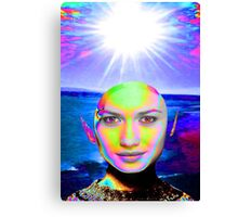 Sunshine Illumination Canvas Print