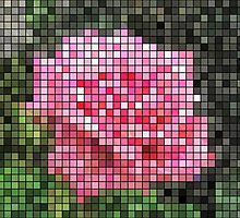 Pink Roses in Anzures 4 Mosaic by Christopher Johnson