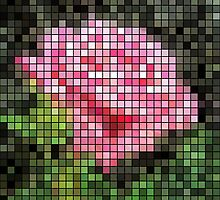 Pink Roses in Anzures 3 Mosaic by Christopher Johnson