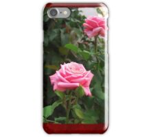 Pink Roses in Anzures 5  Blank P5F0 iPhone Case/Skin