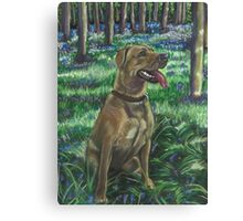 Tilly in the Bluebells Canvas Print