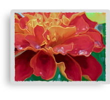 Red & Gold Marigold Canvas Print