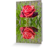 Red Rose reflection Greeting Card