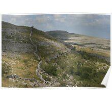 The barren burren national park Poster