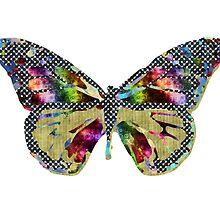 Patchwork Butterfly by Carolina Medberg Smith