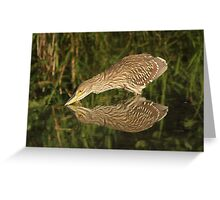 Mirror mirror on the wall who is the fairest heron of all? Greeting Card