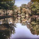 Locke Park by Darren Allen