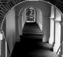 The Secret Passageway  - B&W by ctheworld