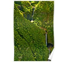 Halawa Valley Waterfalls - Halawa, Molokai Poster
