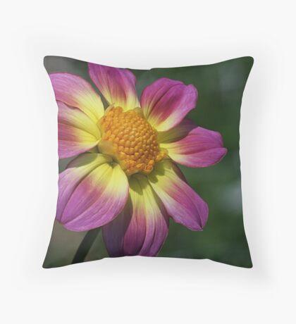 Rosy Outlook for a Dahlia Throw Pillow