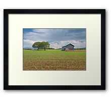 Two trees and a barn Framed Print
