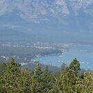 Viewing Lake Tahoe, NV by AuntieBarbie