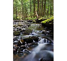 Brook Number 2 Photographic Print