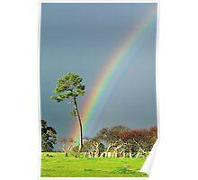 serious rainbow Poster
