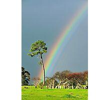 serious rainbow Photographic Print