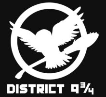 District 9 3/4 by ZombieWest