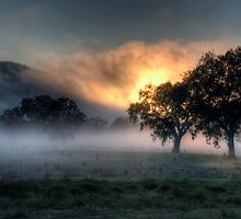 Morning Embers # 2- Jingellic NSW - The HDR Experience by Philip Johnson
