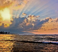 Northshore Rays, Haleiwa, Oahu by Silas Leger