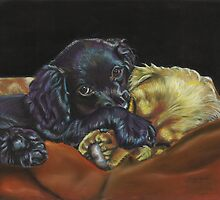 Puppy love by Jane Smith