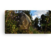 In matters of principle stand like a rock Canvas Print